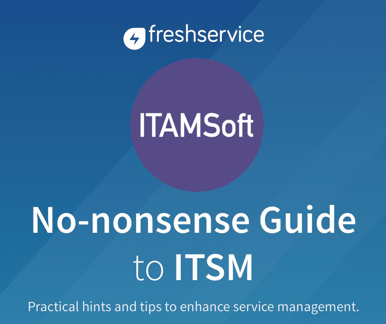 No Nonsense Guide To ITSM